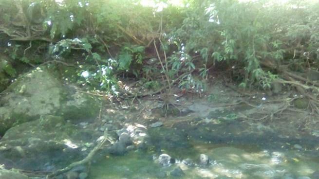 Encuentran restos humanos en terreno agrícola de El Carmen, Cuscatlán