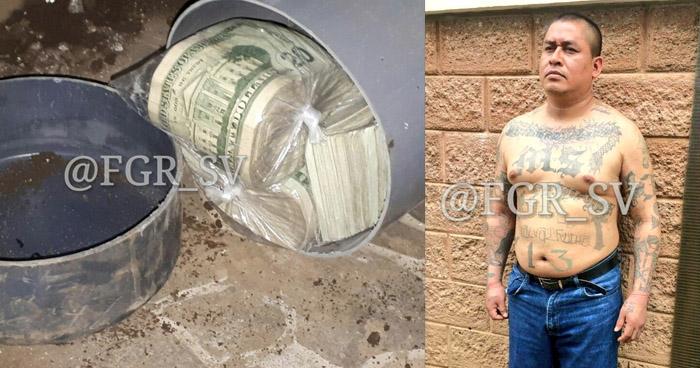 Encuentran más de $156 mil dólares en efectivo, enterrados en vivienda de pandillero buscado por 10 delitos