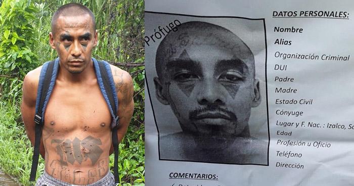Peligroso miembro de la MS capturado en Sonsonate