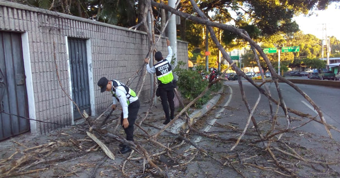 Fuertes vientos comienzan a generar daños en San Salvador