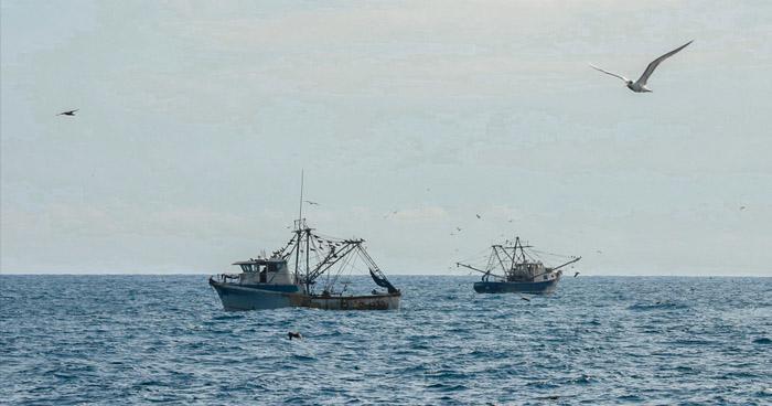 Localizan cuerpo de pescador que desapareció en playa Amatecampo