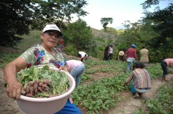 El Salvador Podría perder una donación de $5 millones de no apresurar préstamo