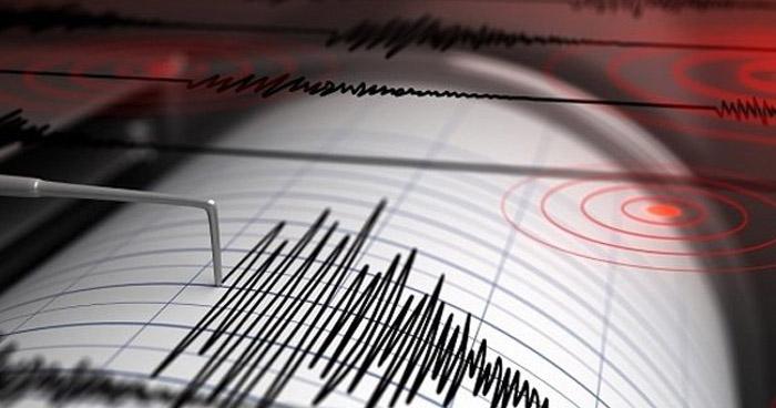 Sismo de 4.6 sacudió parte del territorio nacional esta madrugada