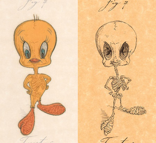 Tweety Bird, without the feathers - bone structure