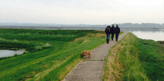 tried-tested-walking-hiking-boots-footpath-countryside-england-essex-estuary-solopress-team-members-dog-pleasent