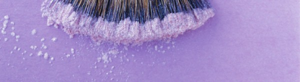 A gentle lilac image showing the edge of a make up powder applicator brush for the mobile beauty business