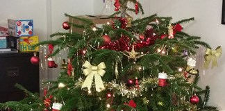 christmas at solopress tree in reception area