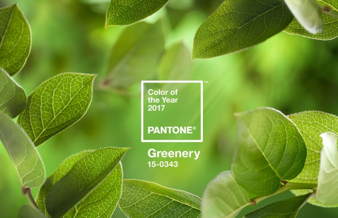 pantone-colour-year-2017