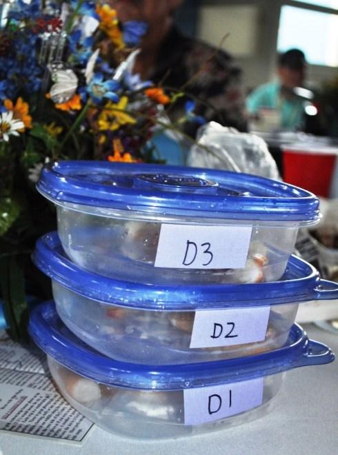 Organoleptic Analysis Samples of Shrimp