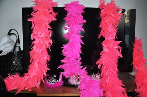 Wine Sisters Wore Pink Feather Boas - They're After My Heart!