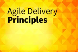 Agile delivery principles
