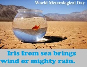 World Meteorological Day Quotes