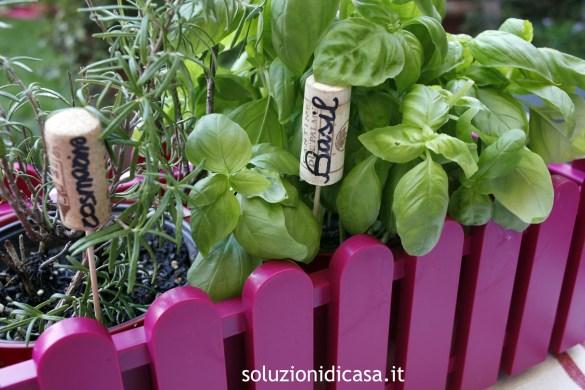 I tappi nelle piante