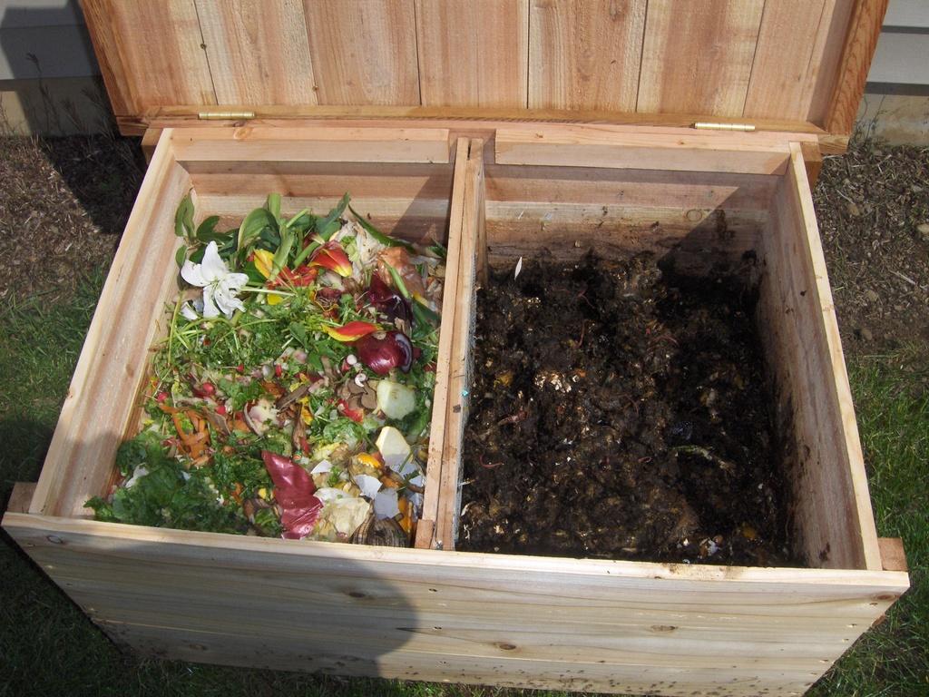Raccolta differenziata umido organico - Non sprecare