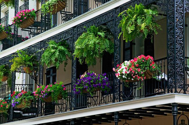 Come scegliere i fiori per il balcone soluzioni di casa for Tutto per il balcone