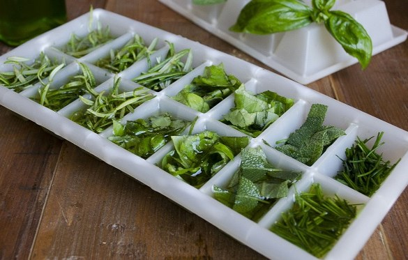Come conservare le erbe aromatiche in freezer