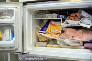 freezer pulito