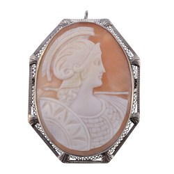 Shell Cameo Pin or Pendant in Filigree Frame