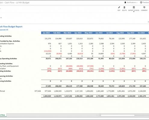 Cash Flow Budget Report Example
