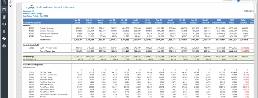 Monthly Profit & Loss Forecast Report Example
