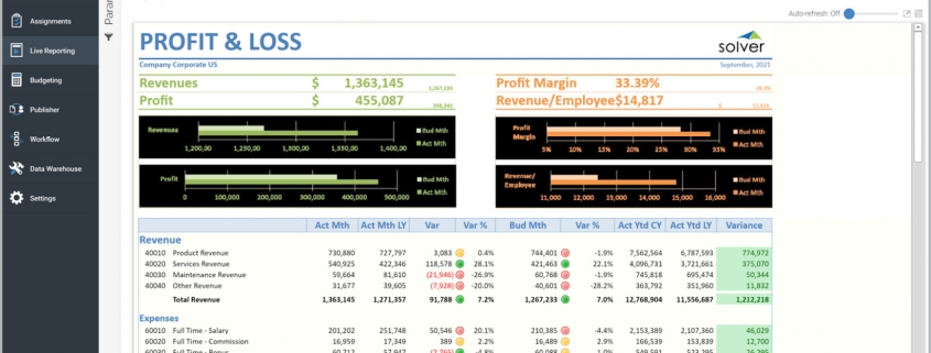 Profit & Loss Report with Charts and Modern Layout Example