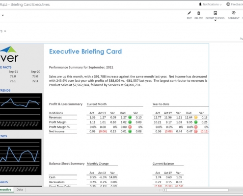 Executive Briefing Card Report Example