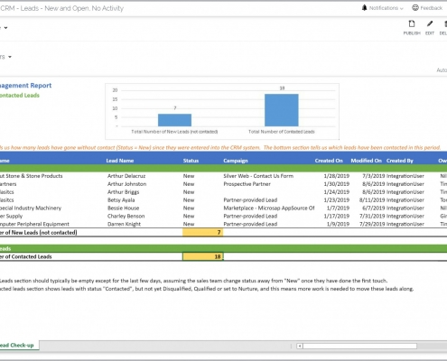 Lead Management Report Example