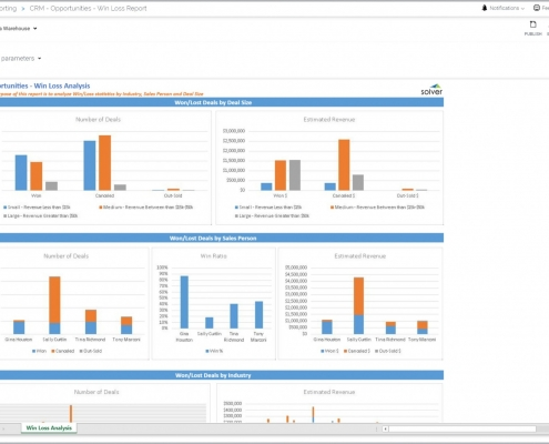 Win Loss Dashboard Report Example by Person and Deal and Industry