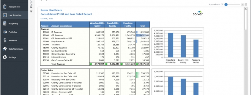 Consolidated Profit & Loss Report for a Healthcare Provider
