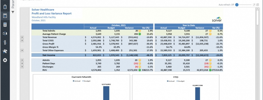 Example of a Profit & Loss Report with KPIs for a Healthcare Provider