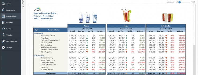 Example of a Sales by Customer Report for a Distribution Company