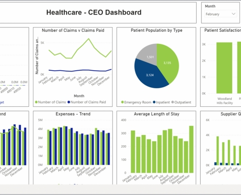 Example of a CEO Dashboard for Healthcare Providers
