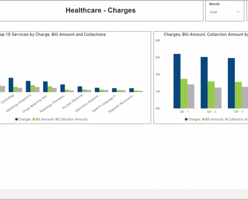 Example of a Top Services Charges Dashboard for Healthcare Providers