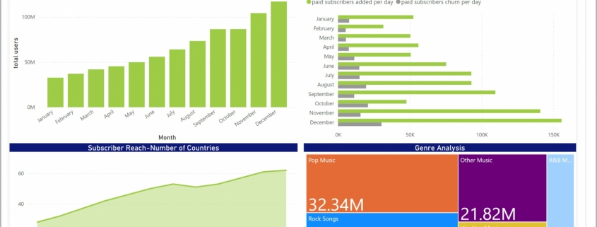 Example of a Subscriber Dashboard for Media Companies