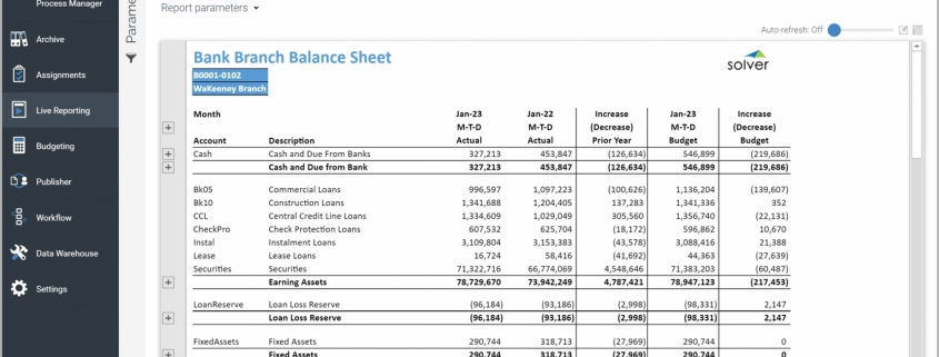 Example of a Balance Sheet Report for Bank Branches