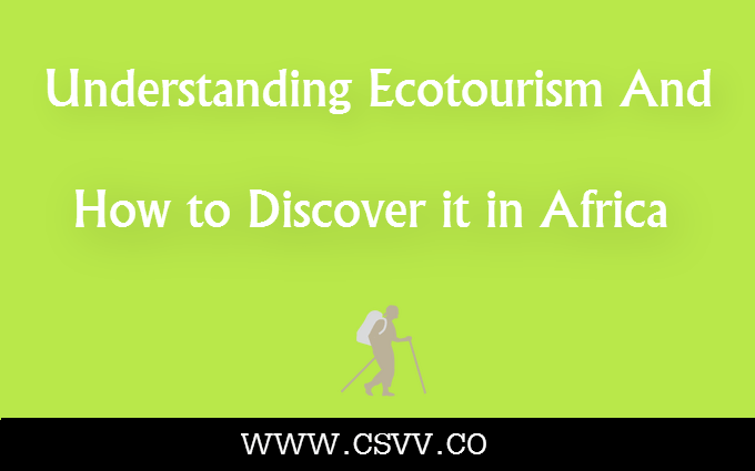 Understanding Ecotourism and How to Discover it in Africa