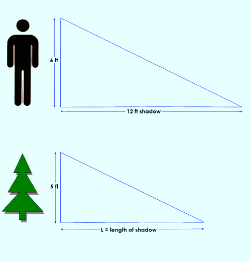 small resolution of similar triangles calculating the length of a shadow click to enlarge image