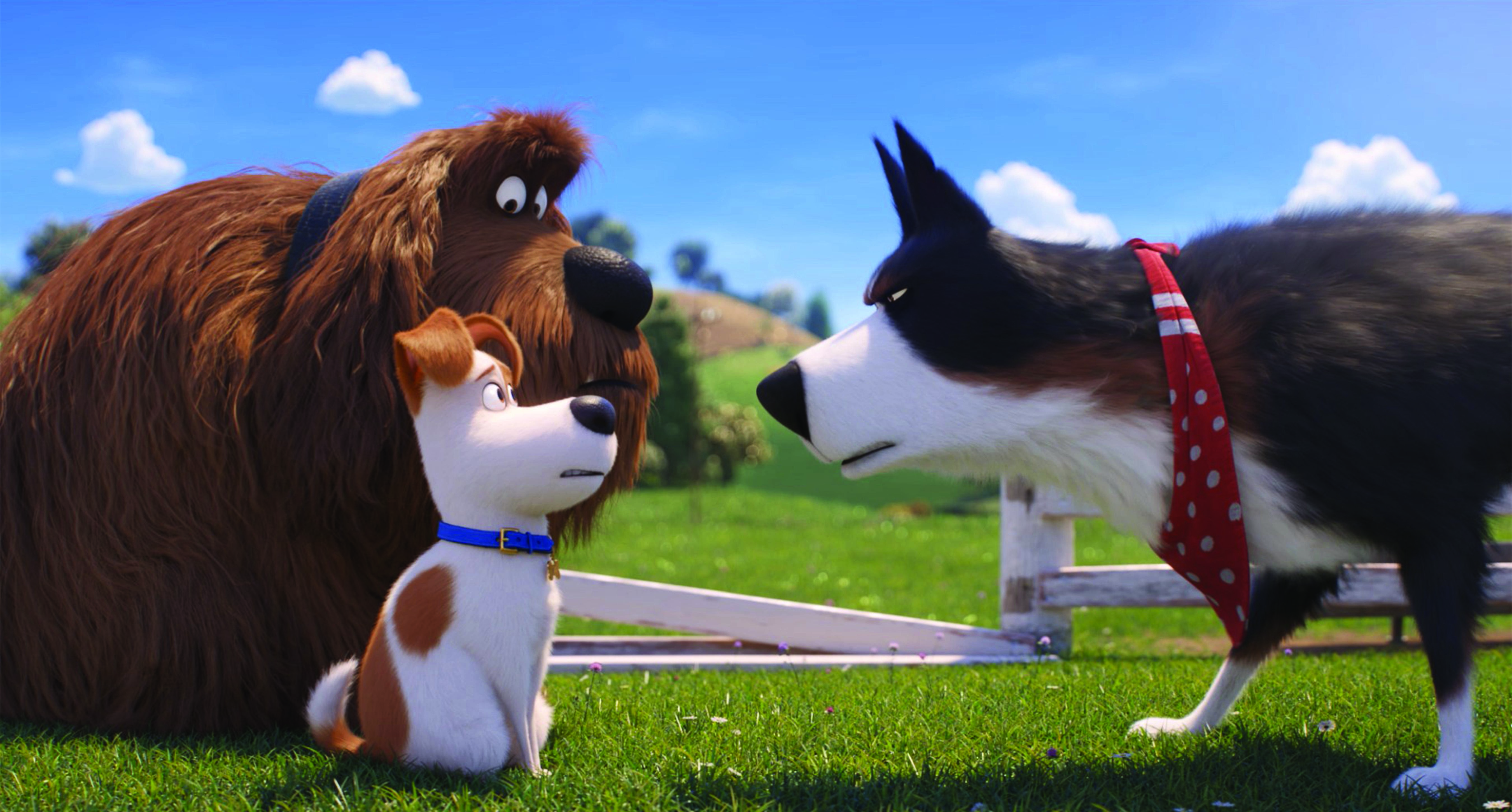 The Secret Life Of Pets 2 Is Merely Okay Solzy At The Movies