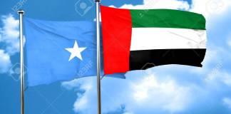 Somalia Flag With Uae Flag, 3d Rendering