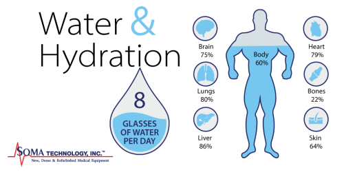 The Importance of Staying Hydrated