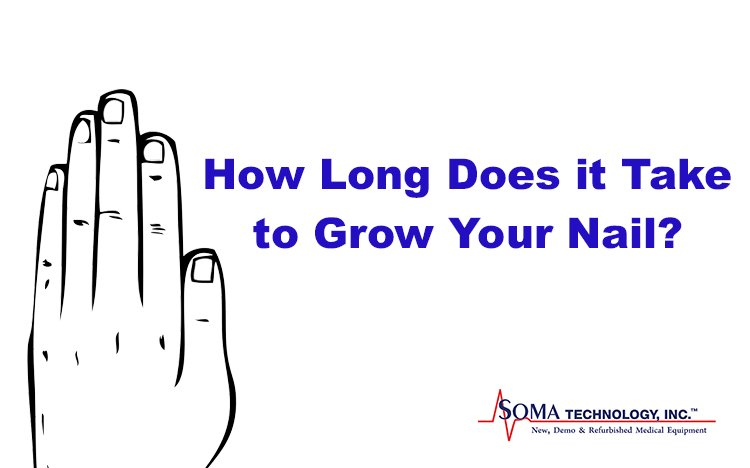 How Long Does it Take to Grow Your Nail