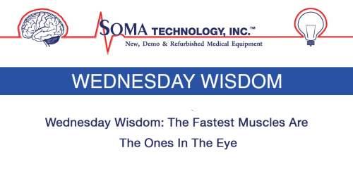 Wednesday Wisdom Blinking