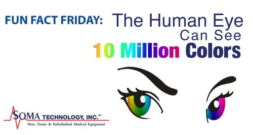 Human Eye Sees 10 Million Colors