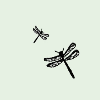 Dragonfly by Some small stories 2