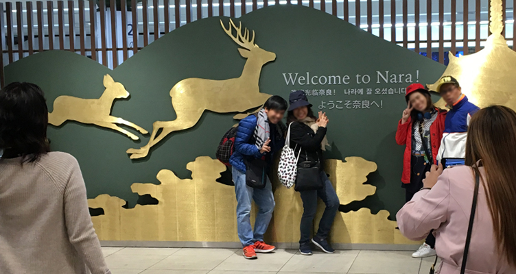 Nara Park Deer Park Japan Osaka Somethingjam