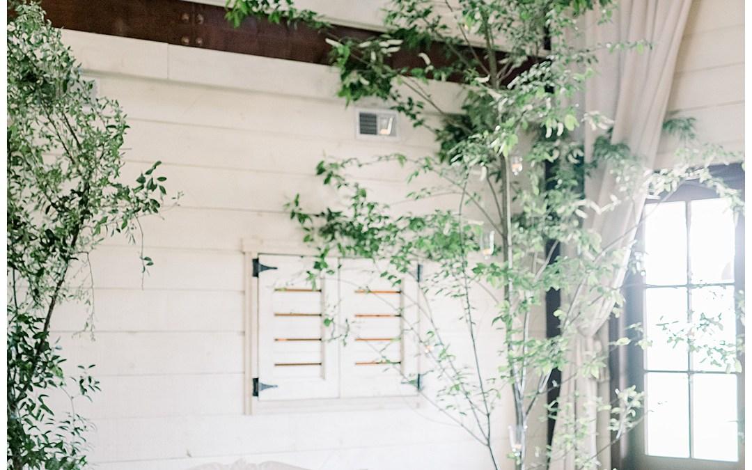 Janelle + Jess || Pippin Hill  French White Wedding, Charlottesville, VA