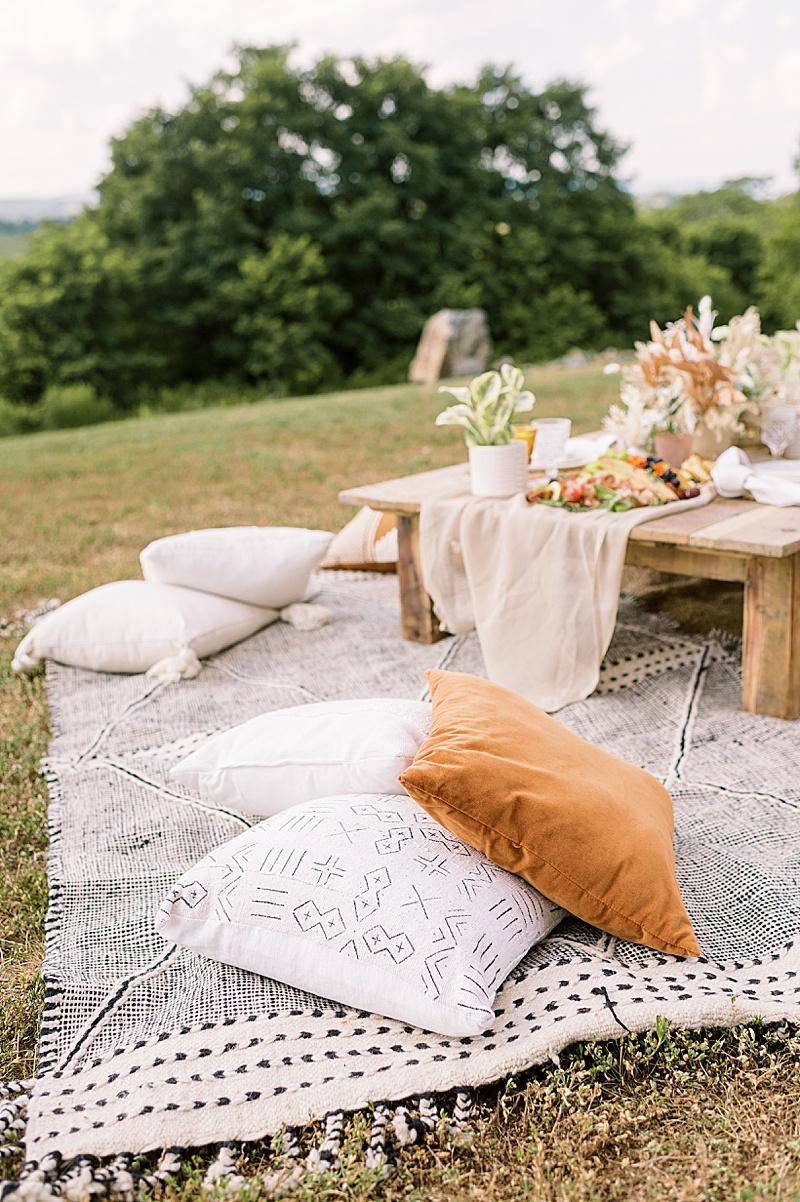 vineyard_wedding_rentals_virginia_0481.jpg
