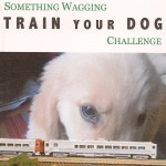 Something Wagging Train Your Dog (etc.) Challenge – We're All Winners!