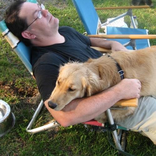 Golden Retriever sitting on man's lap in beach chair.