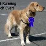 Loneliness of the Dog Distance Runner – Wordless Wednesday